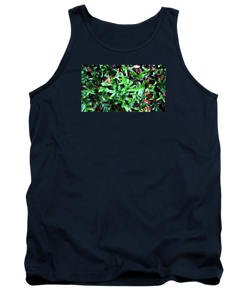 Staghorn Tank Top featuring the photograph Staghorn Fern With Dead Leaves by Nareeta Martin