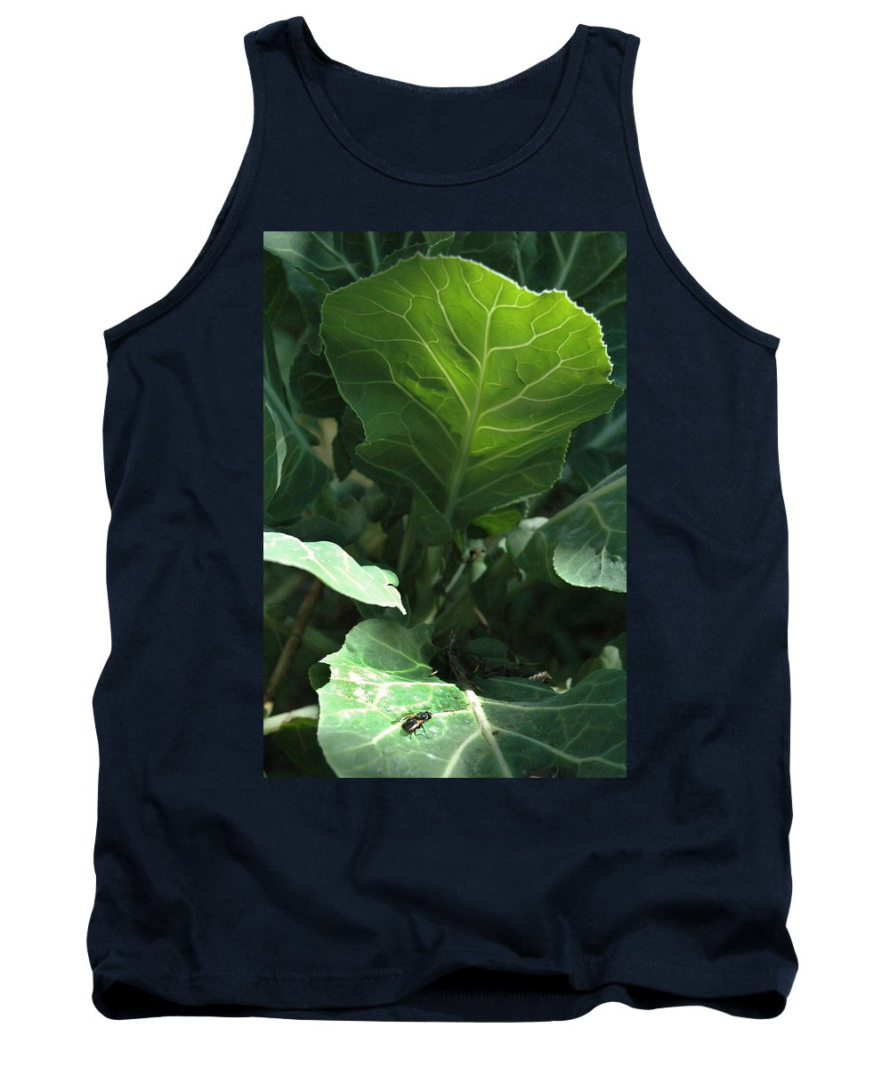 Cabbage Tank Top featuring the photograph Super-fly Cabbage by Trish Hale