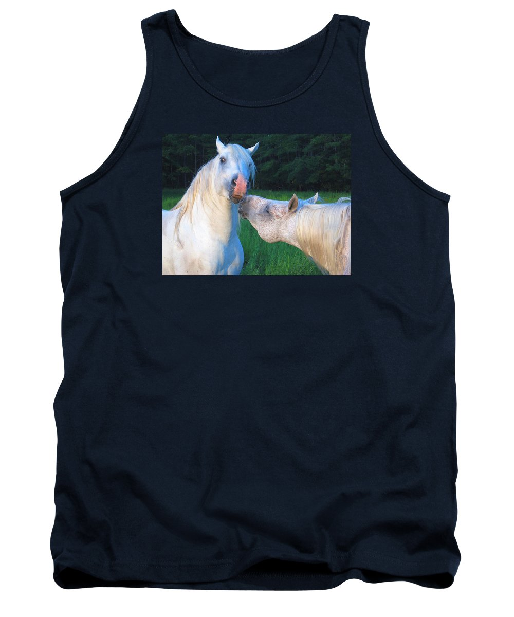 Stallions Tank Top featuring the photograph The Challange Begins by Dawn Johansen