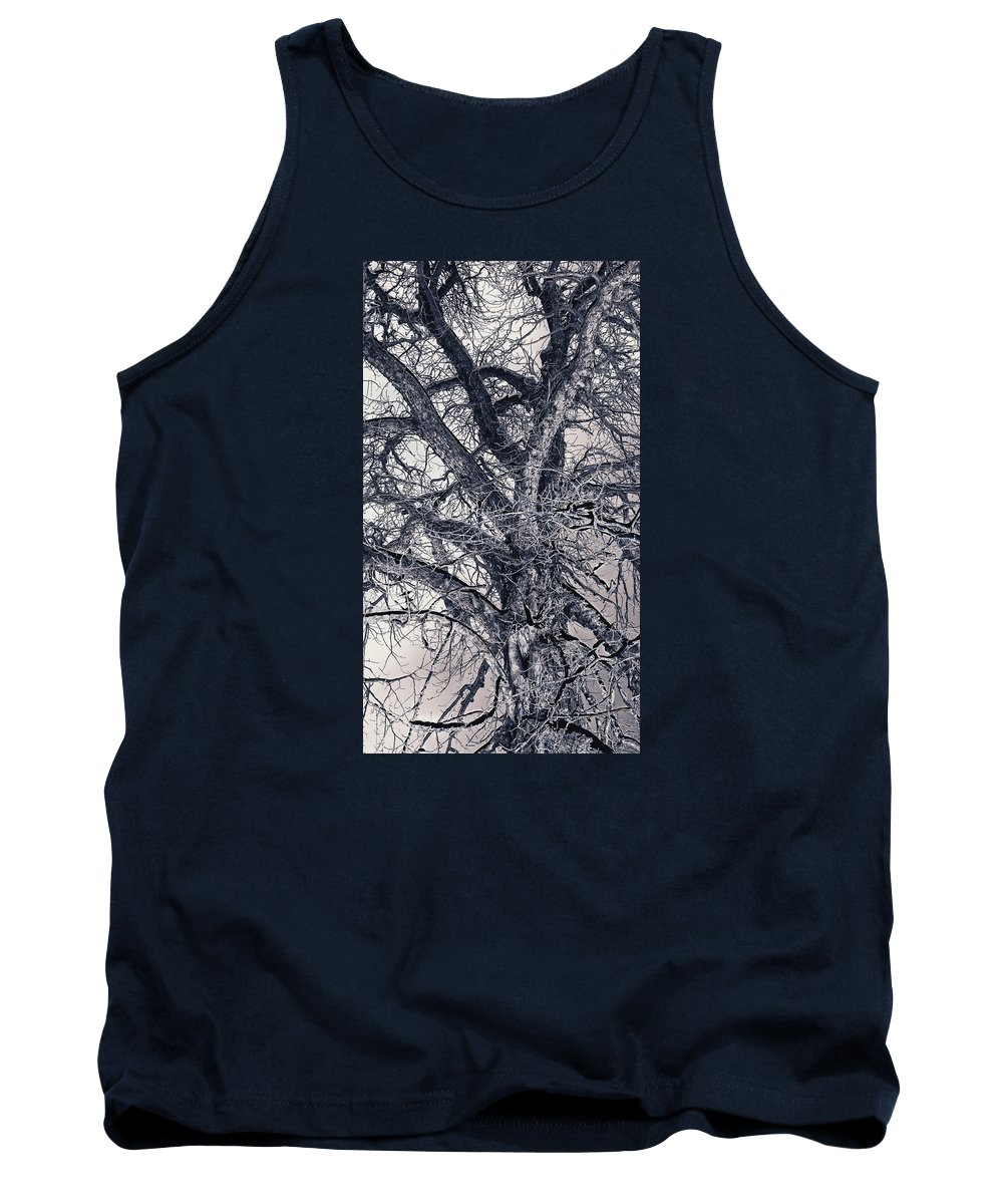 Tree Tank Top featuring the photograph Tree by Indrek Laanetu