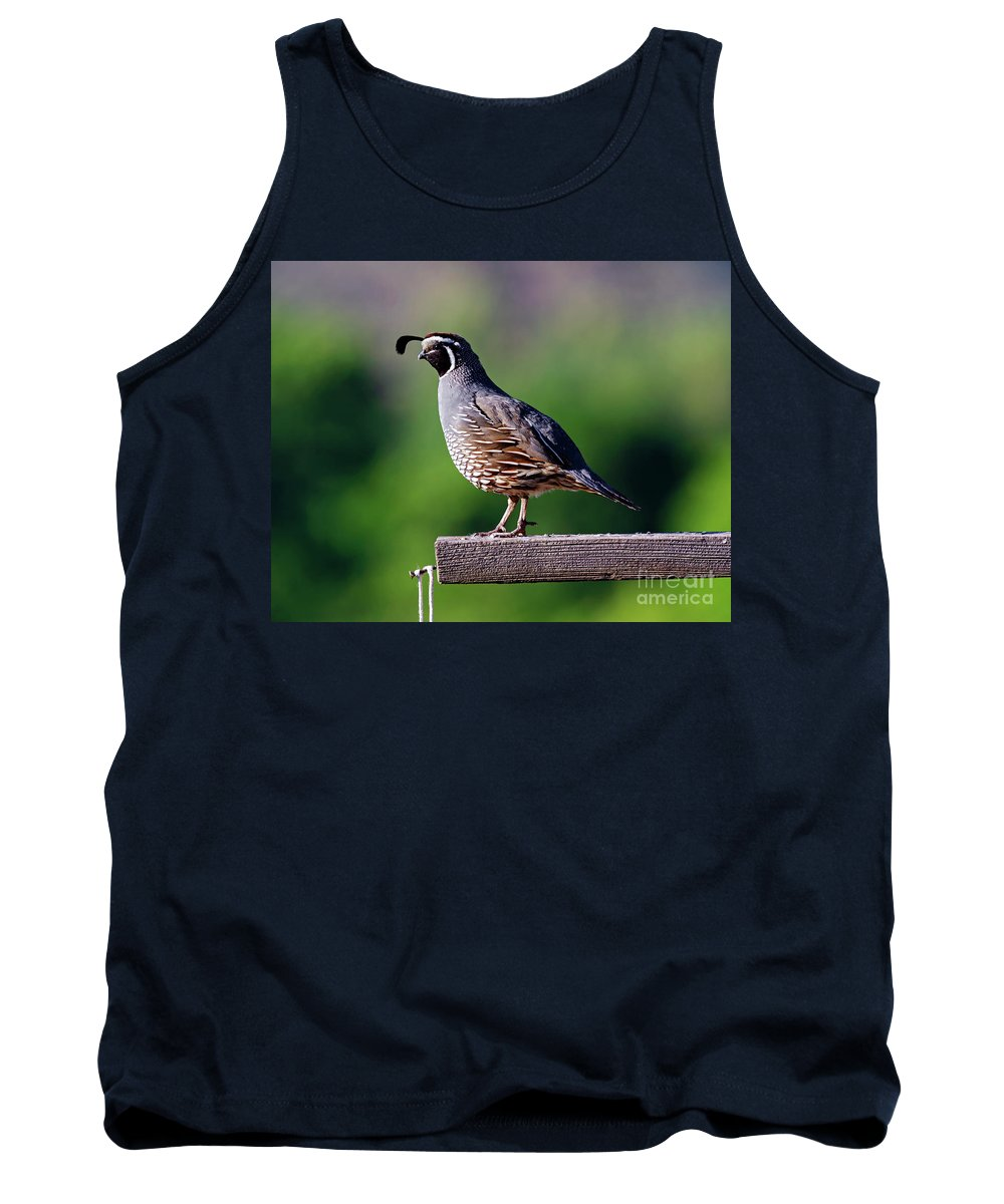 Quail Tank Top featuring the photograph Walking The Plank by Mike Dawson