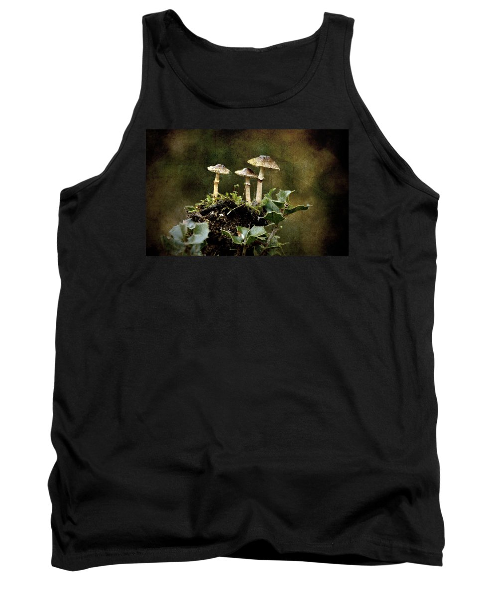 Mushrooms Tank Top featuring the photograph Little Mushrooms by RicardMN Photography
