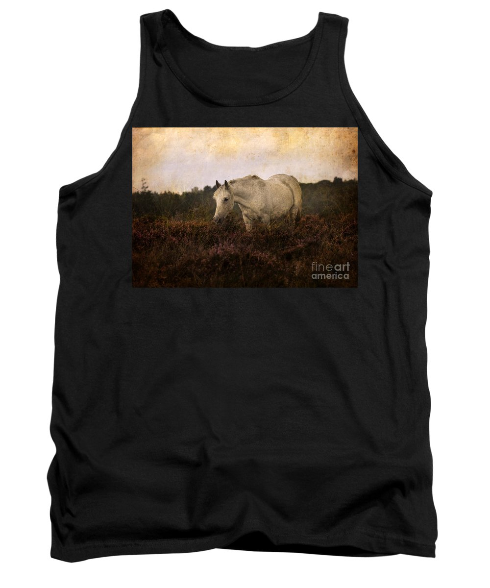 Pony Tank Top featuring the photograph Bed Of Heather by Angel Ciesniarska