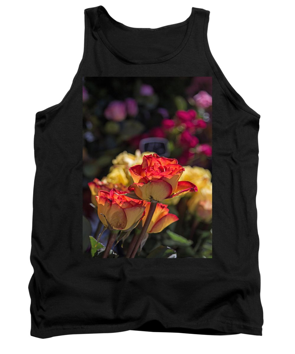 Roses Tank Top featuring the photograph Buy Me A Rose by Deb Buchanan
