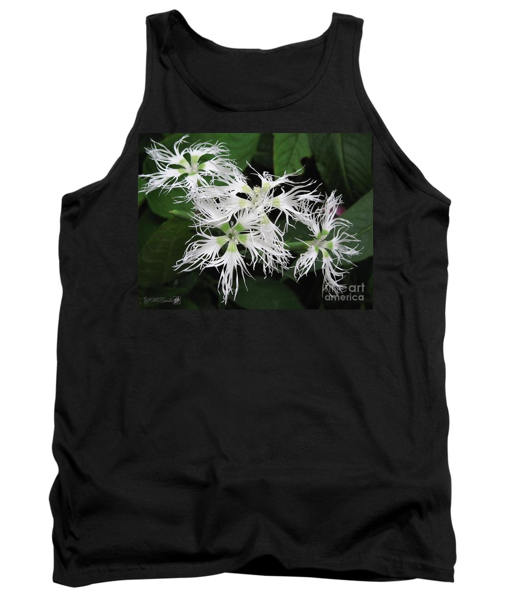 Dianthus Tank Top featuring the painting Dianthus Superbus - White by J McCombie