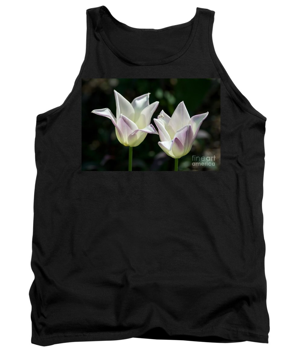Lavender Tank Top featuring the photograph Enchanted by Joseph Yarbrough