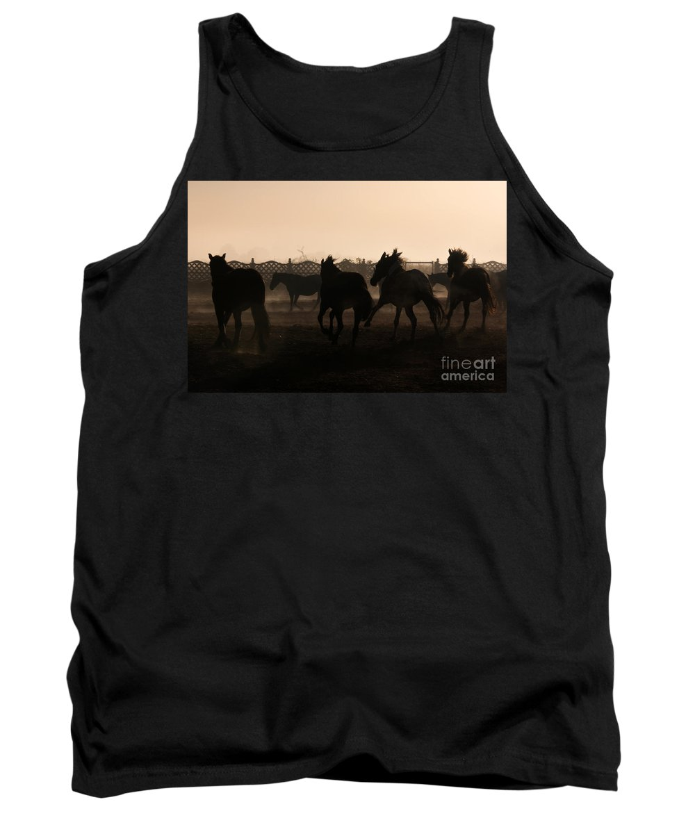 Horse Tank Top featuring the photograph Misty Morning by Angel Ciesniarska