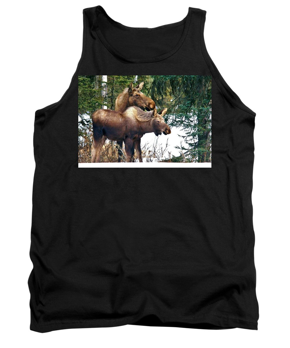 Moose Tank Top featuring the photograph Mothers Love by Karen Jones