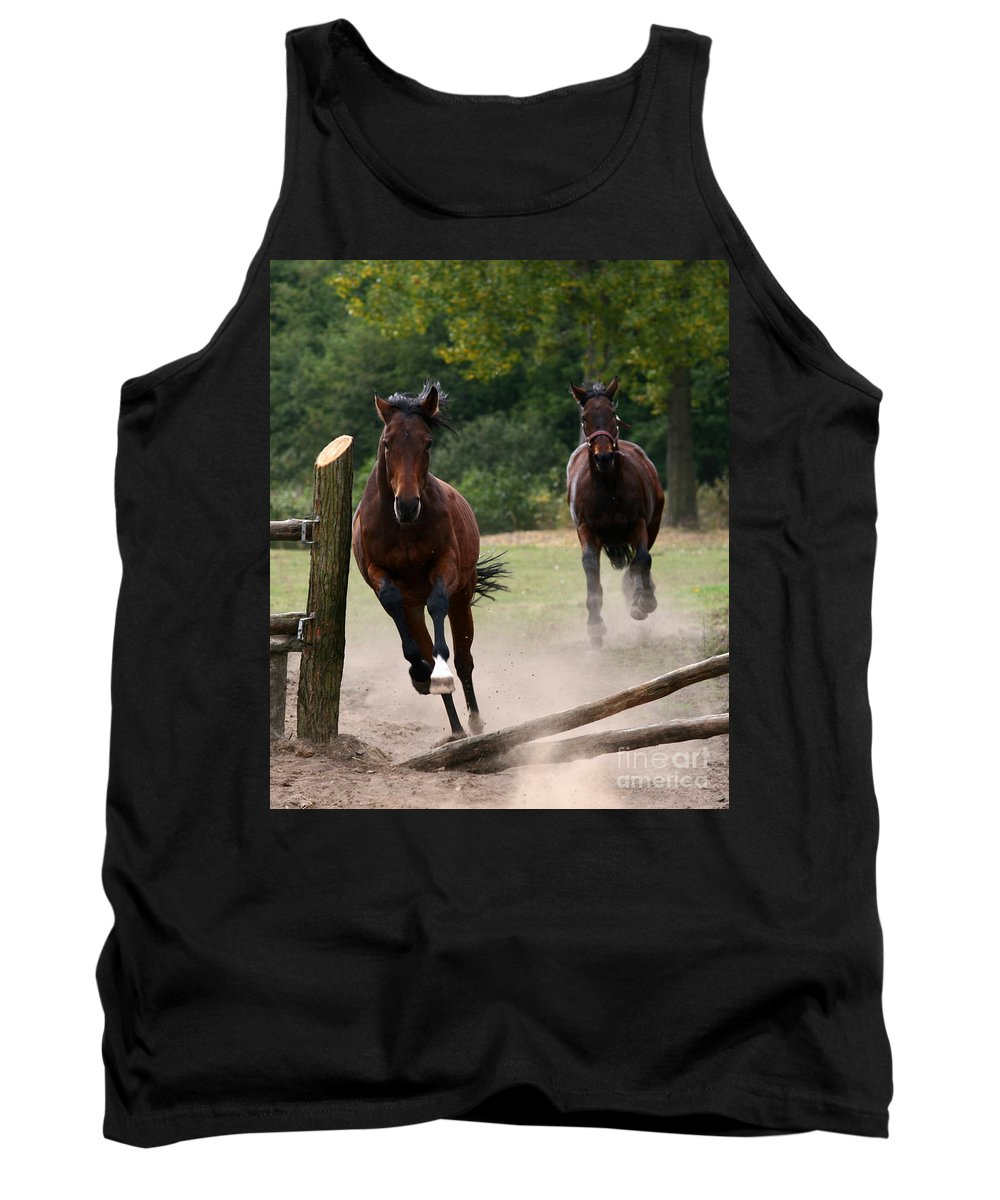 Horse Tank Top featuring the photograph Over The Fence by Angel Ciesniarska