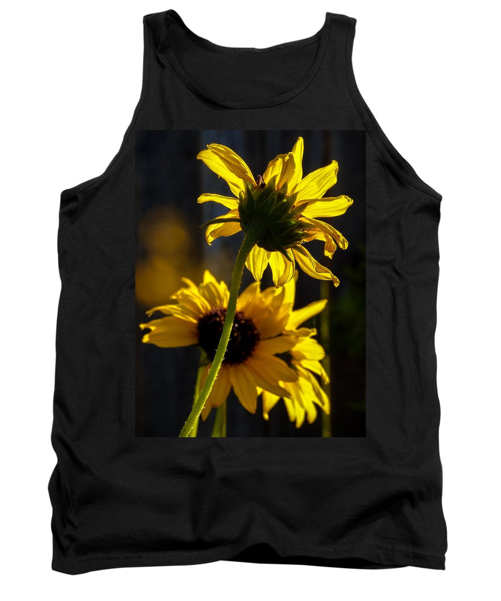 Jeanette Wygant Tank Top featuring the photograph Sunshine On My Shoulders by Jeanette Wygant