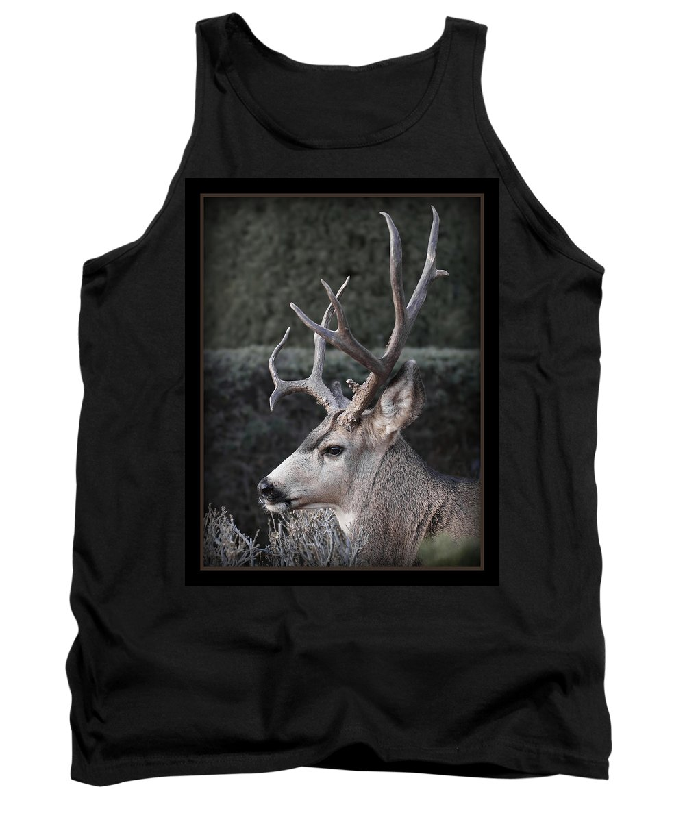 The Buck Tank Top featuring the photograph The Buck by Ernie Echols