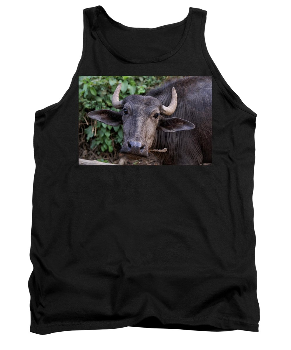 Animals Tank Top featuring the digital art Water Buffalo by Carol Ailles