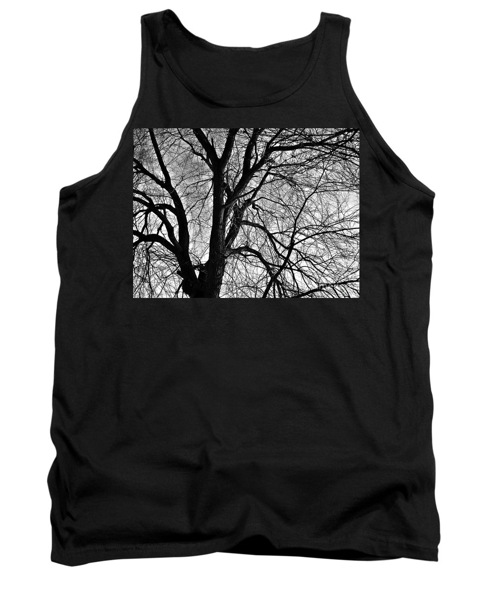 Winter Tank Top featuring the photograph Winter by Chalet Roome-Rigdon