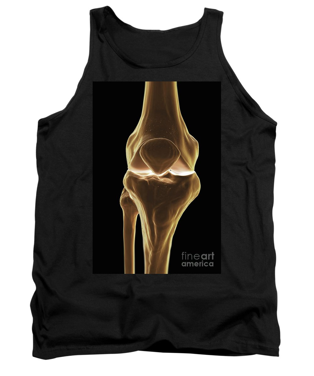 Biomedical Illustration Tank Top featuring the photograph Knee Bones Right by Science Picture Co