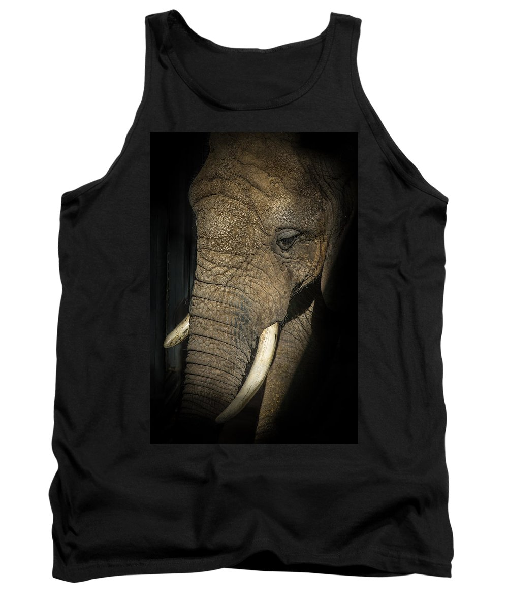 Animals Tank Top featuring the photograph African Elephant by Ernie Echols