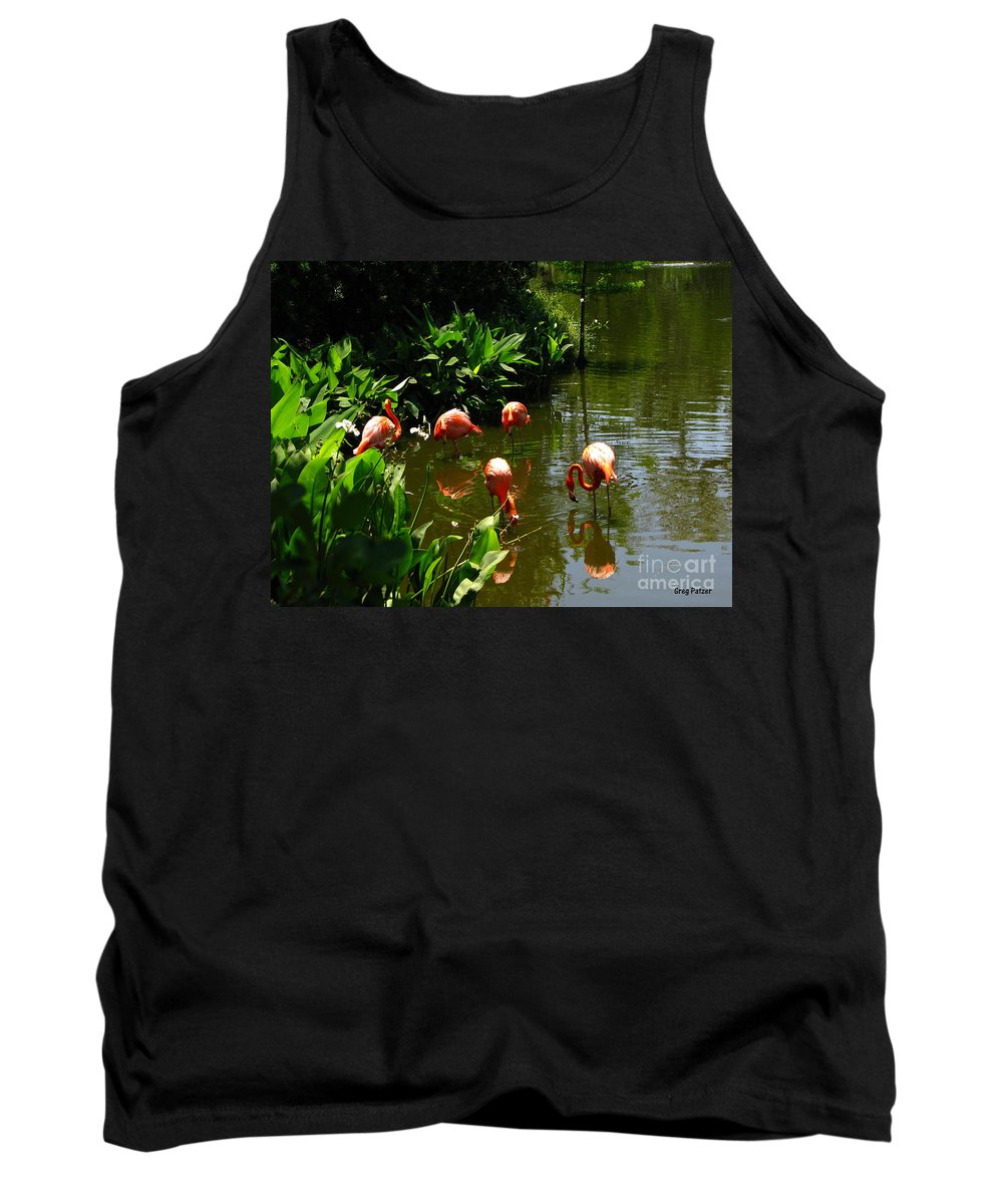Flamingos Tank Top featuring the photograph Flamingos by Greg Patzer