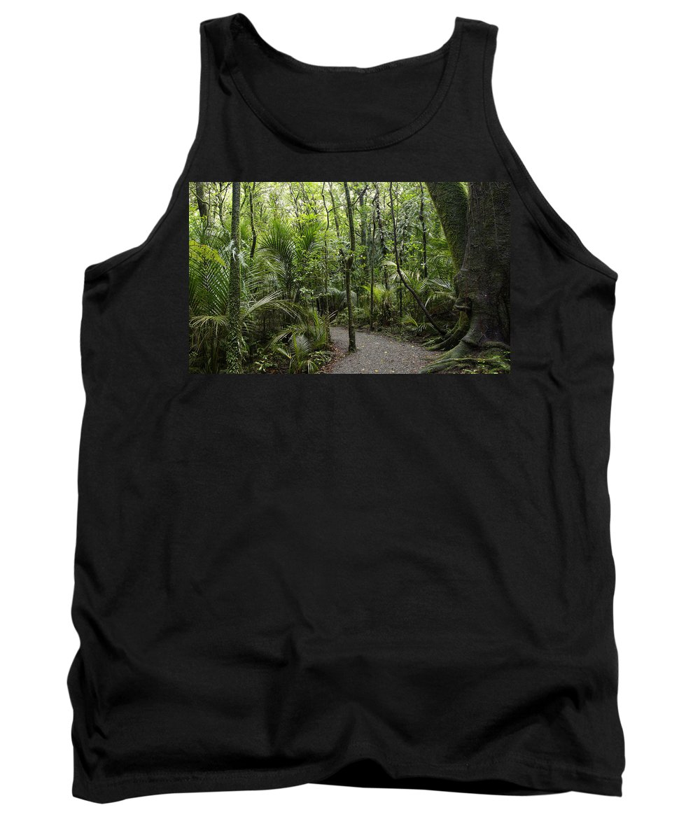 New Zealand Tank Top featuring the photograph Jungle Trail by Les Cunliffe