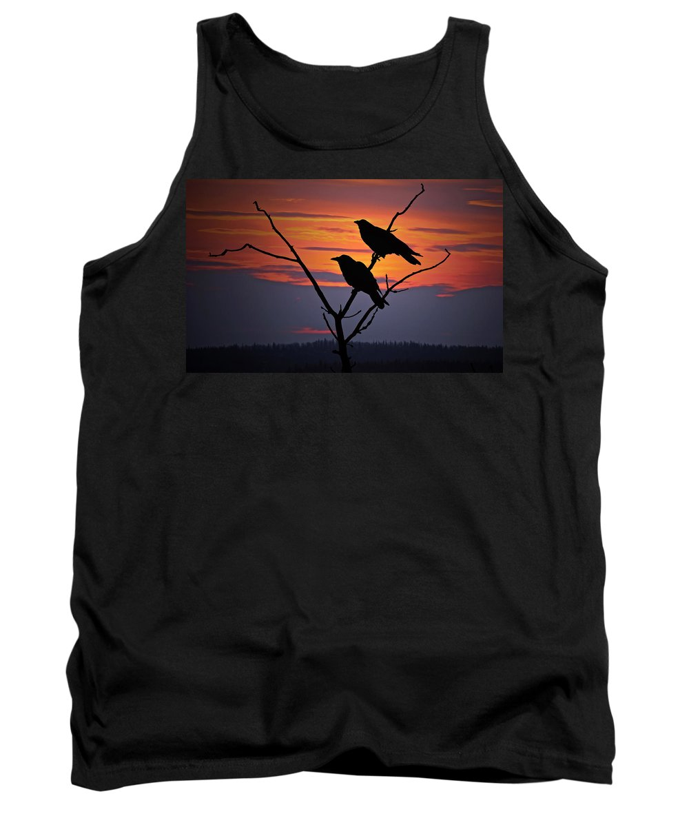 Raven Tank Top featuring the photograph 2 Ravens by Ron Day
