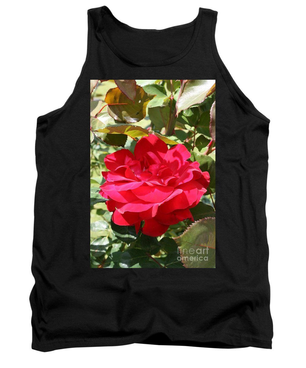 Red Rose Tank Top featuring the photograph Red Red Rose by Christiane Schulze Art And Photography