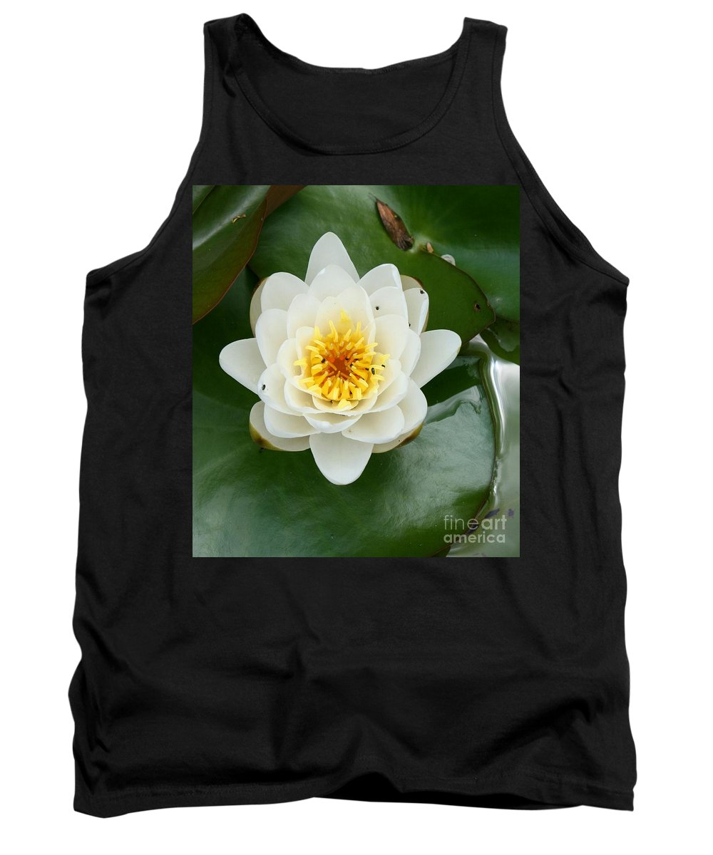 Waterlily Tank Top featuring the photograph White Waterlily by Christiane Schulze Art And Photography
