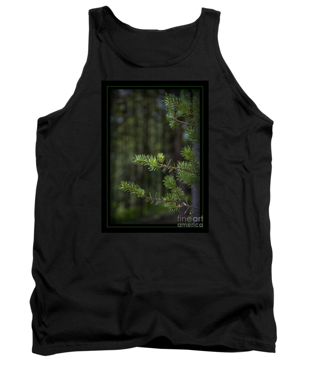 Forest Tank Top featuring the photograph Can't See The Forest by John Stephens
