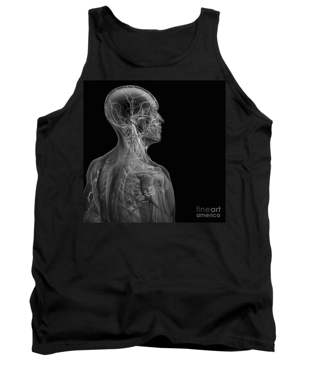 Transparent Tank Top featuring the photograph Human Anatomy by Science Picture Co