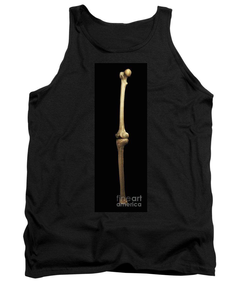 Anatomical Model Tank Top featuring the photograph Leg Bones Right by Science Picture Co