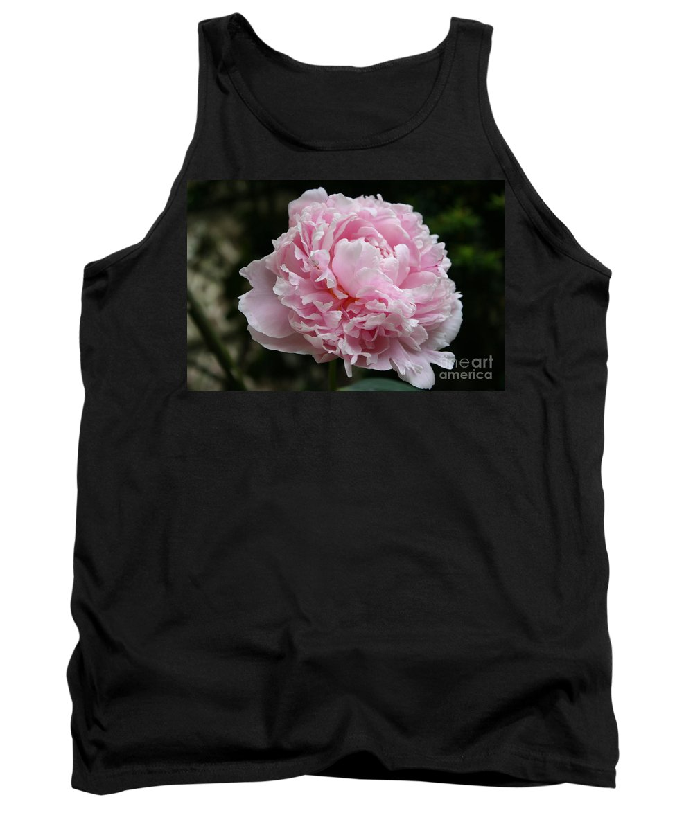 Peonies Tank Top featuring the photograph Pink Peony by Christiane Schulze Art And Photography