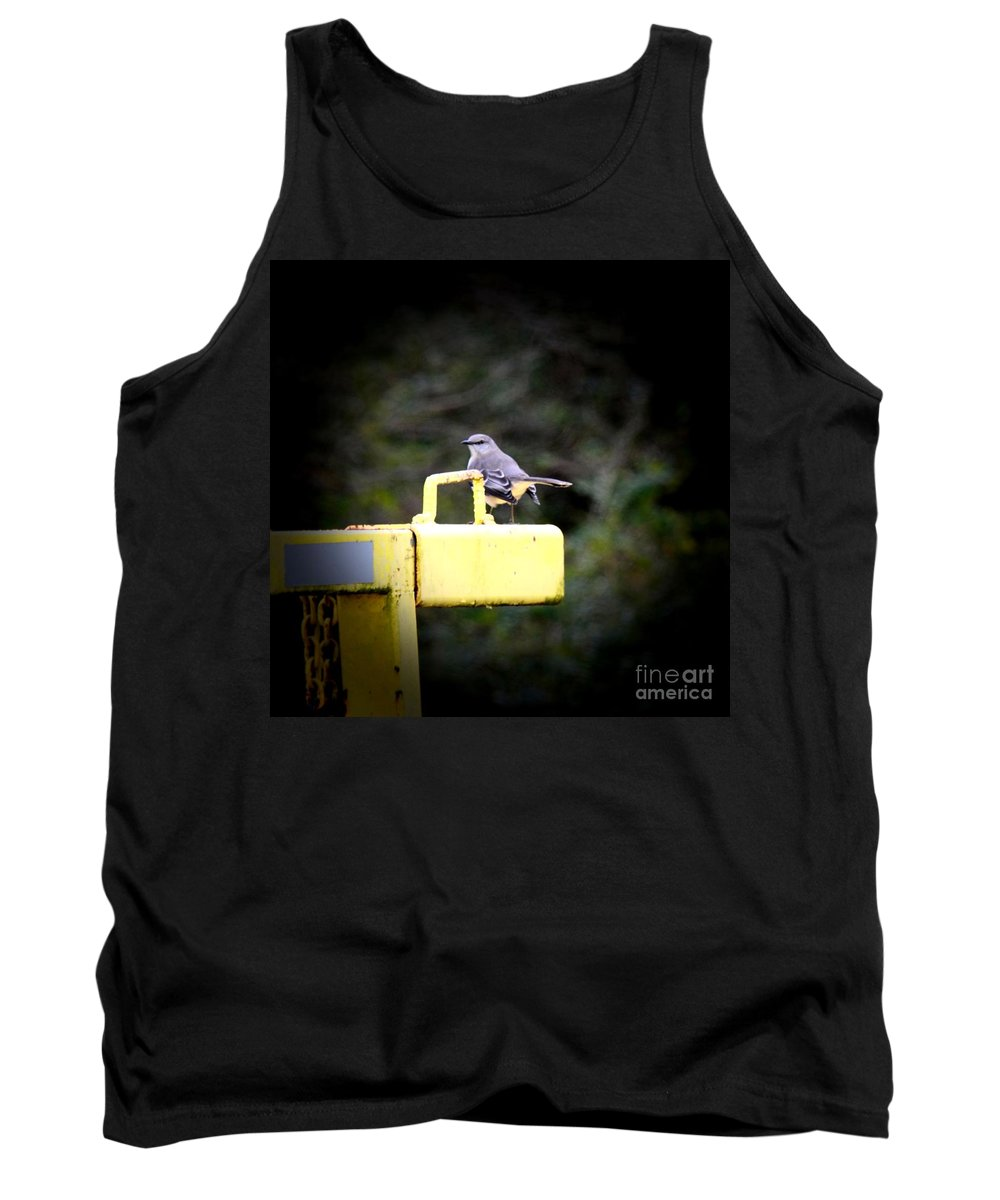 A December Farewell 2013 Tank Top featuring the photograph A December Farewell 2013 by Maria Urso