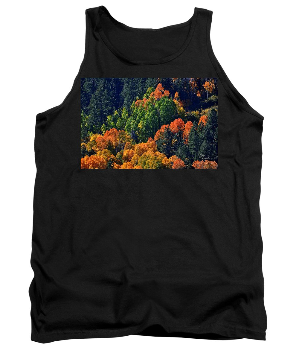 Trees Tank Top featuring the photograph A Splash Of Color by Lynn Bawden