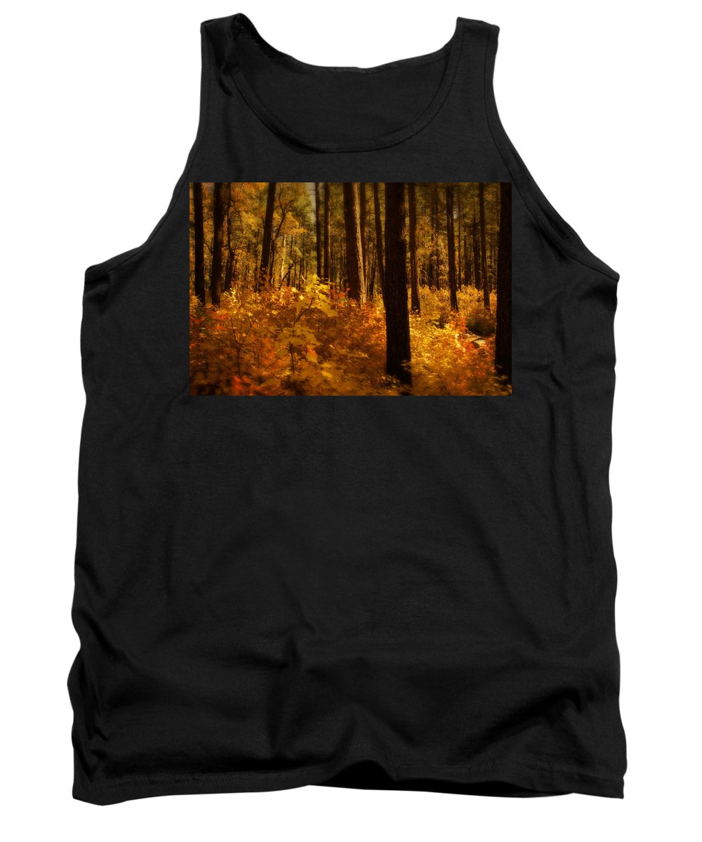 Fall Tank Top featuring the photograph A Walk Through The Woods by Saija Lehtonen