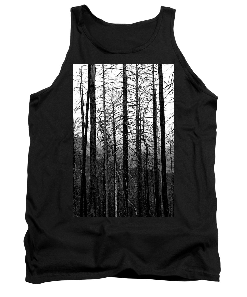 Trees Tank Top featuring the photograph After The Fire by Joe Kozlowski