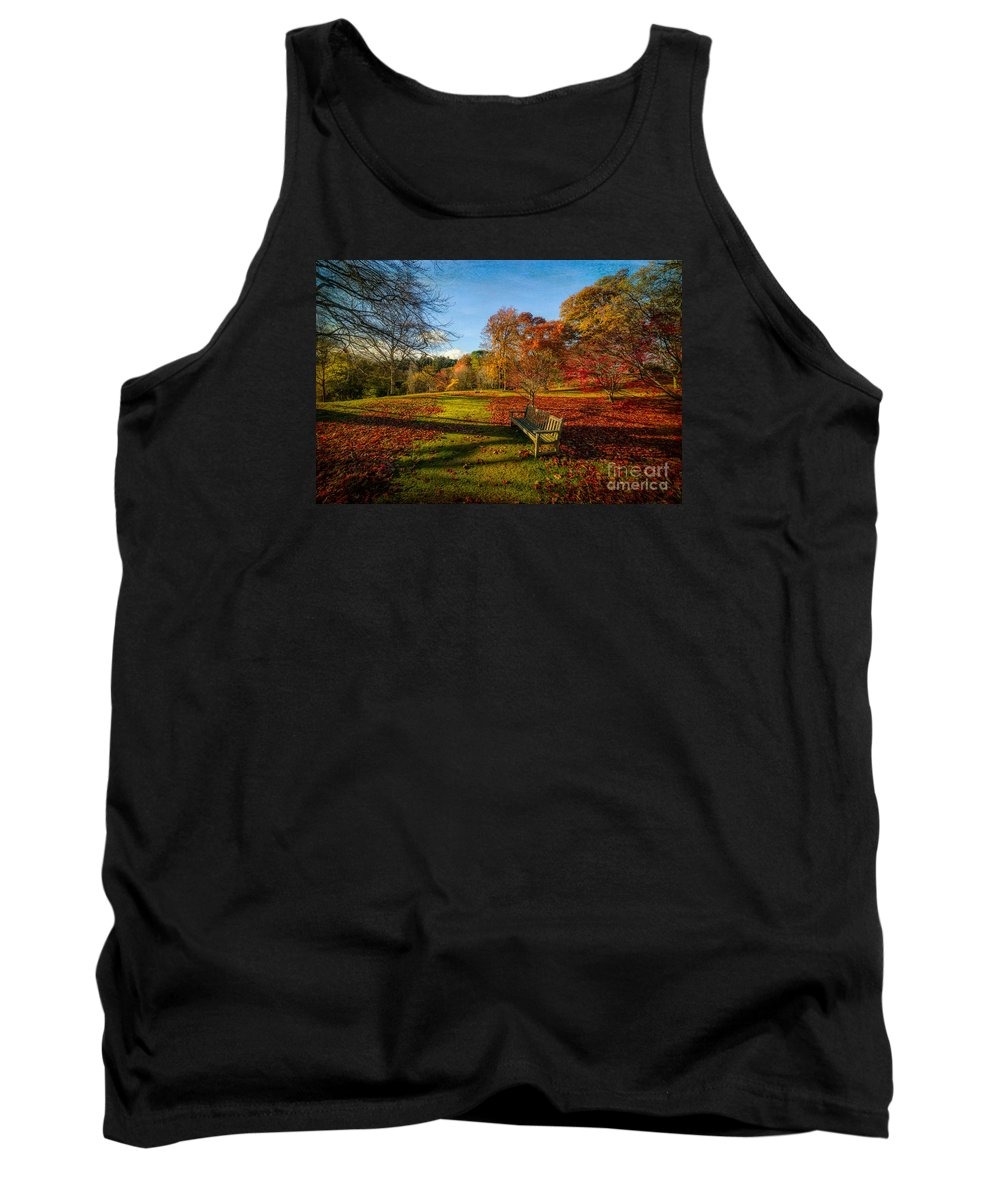 Autumn Tank Top featuring the photograph Afternoon Shadows by Adrian Evans
