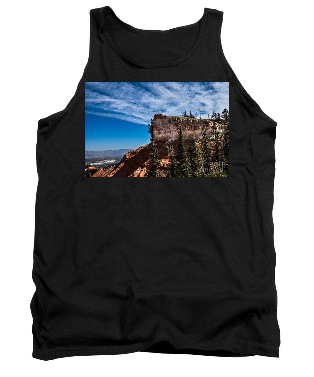 Brown Tank Top featuring the photograph Against The Wind by Rich Priest