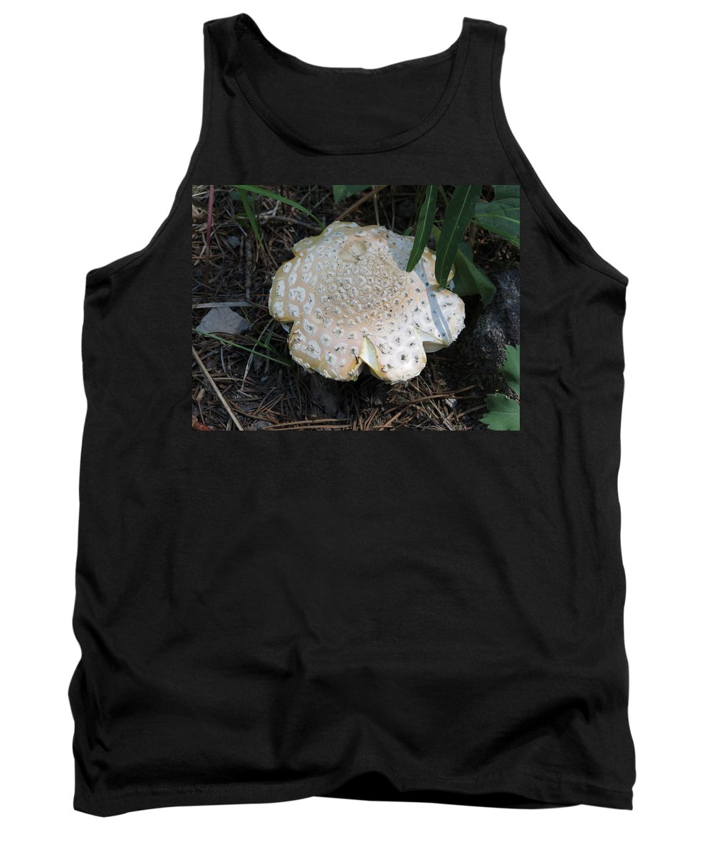 Mushroom Tank Top featuring the photograph Along The Trail by Laurel Powell