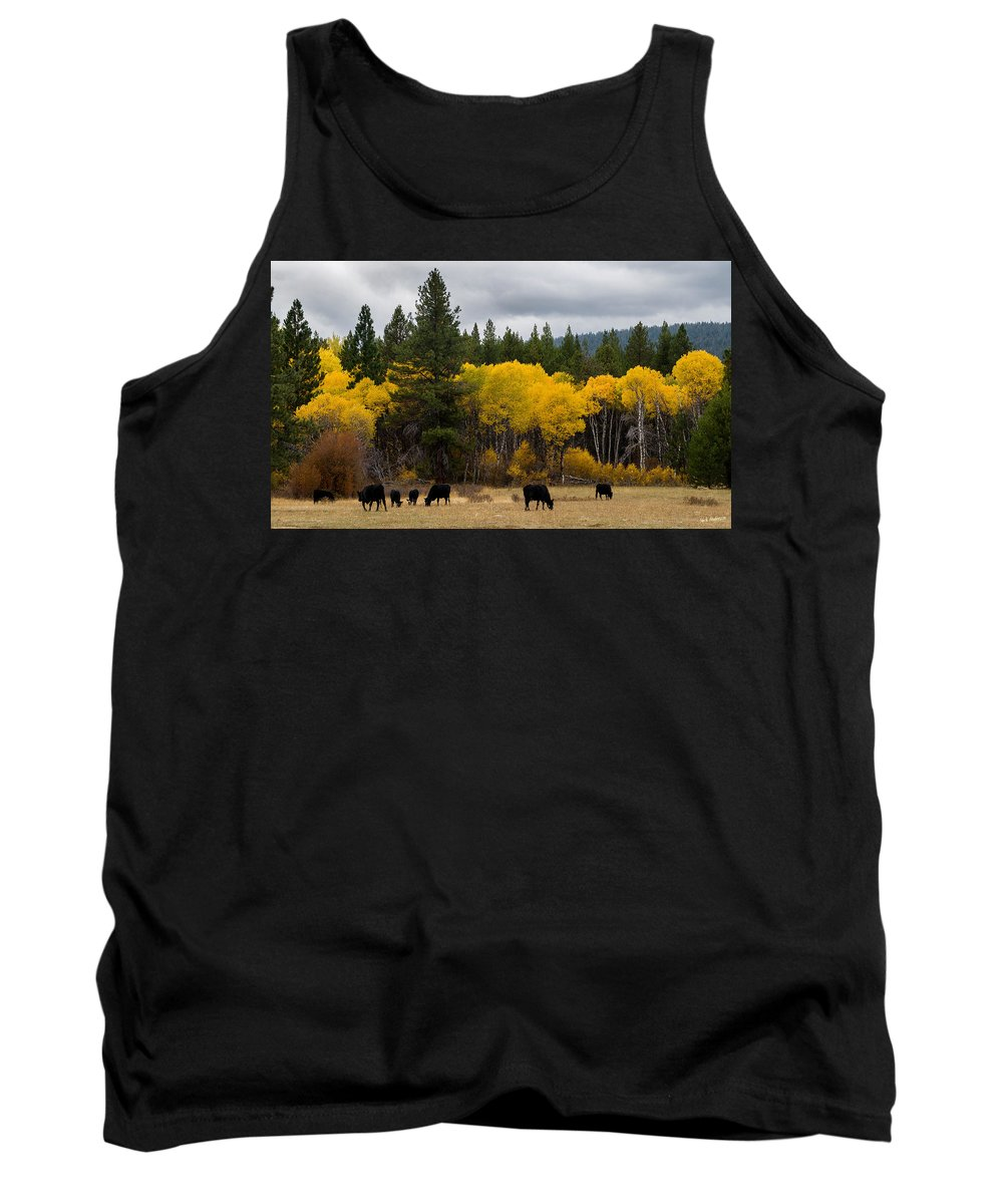 Aspens Tank Top featuring the photograph Aspens And Cows by Mick Anderson
