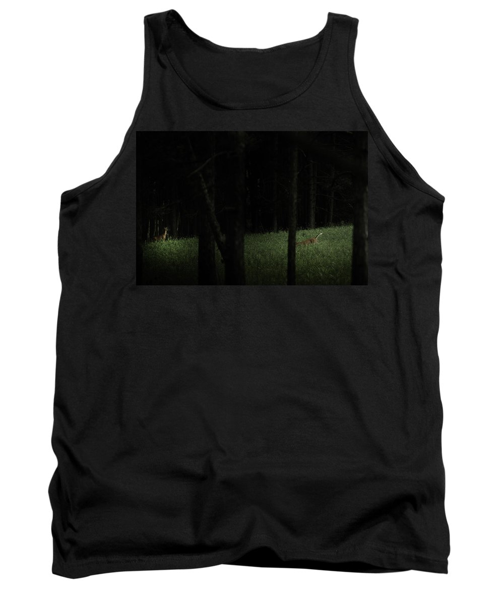 Deer Tank Top featuring the photograph At Play In Darkened Woods by Shane Holsclaw