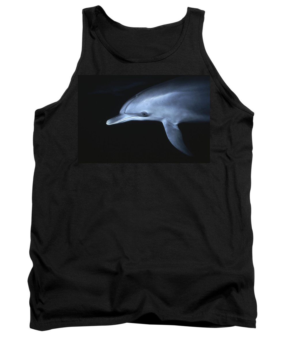 Feb0514 Tank Top featuring the photograph Atlantic Spotted Dolphin Juvenile by Hiroya Minakuchi