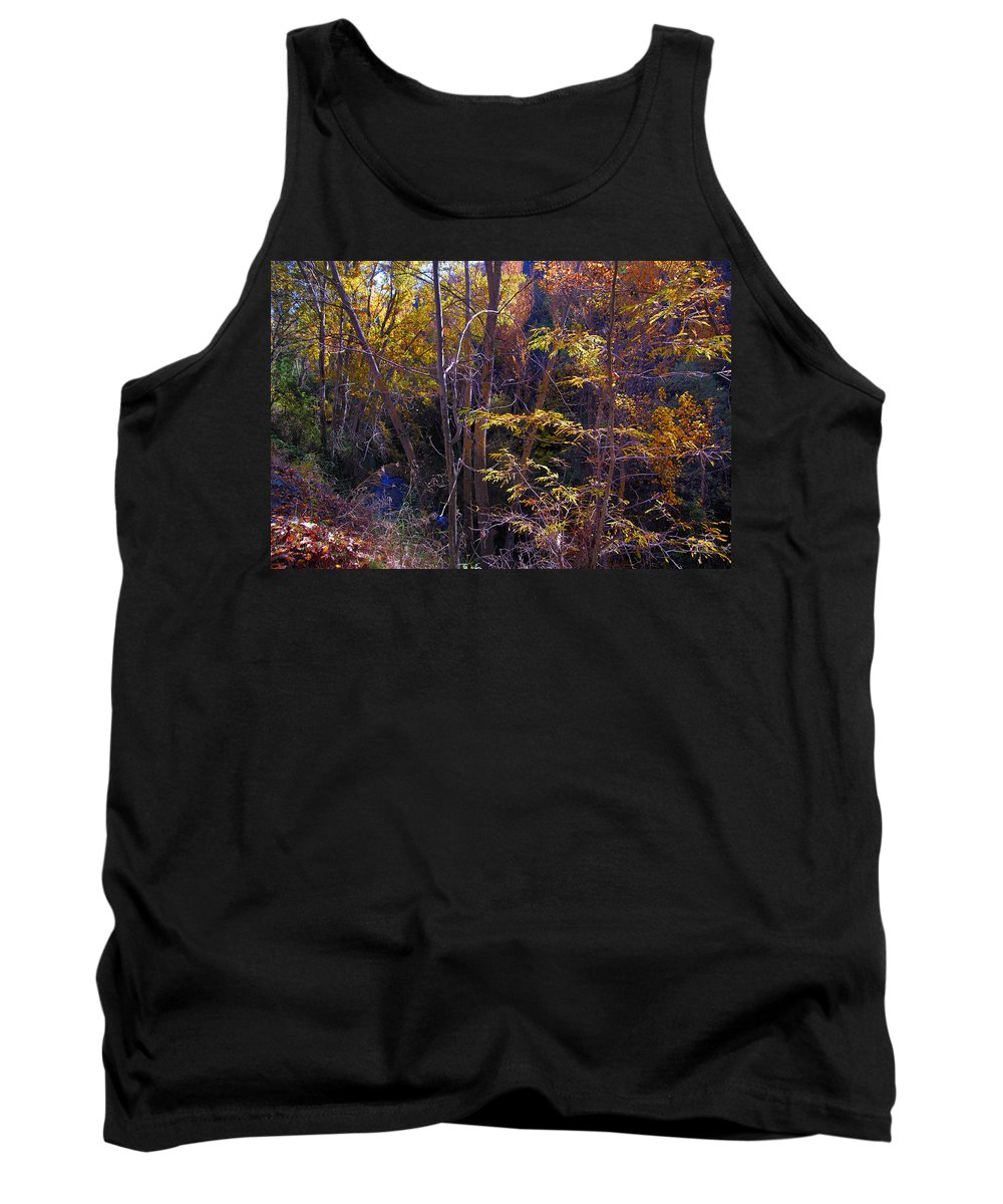 Fall Tank Top featuring the photograph Autumn Colors by Guido Montanes Castillo