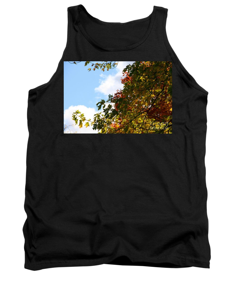 Minnesota Tank Top featuring the photograph Autumn To Perfection by Susan Herber