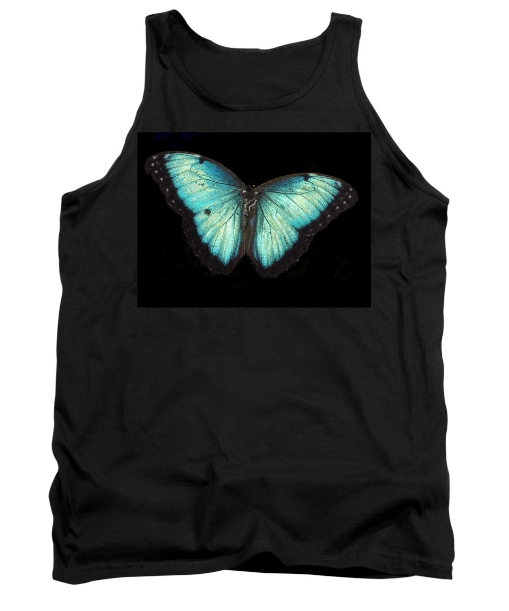 Animal Tank Top featuring the photograph Beautiful Butterfly by Glenn Aker