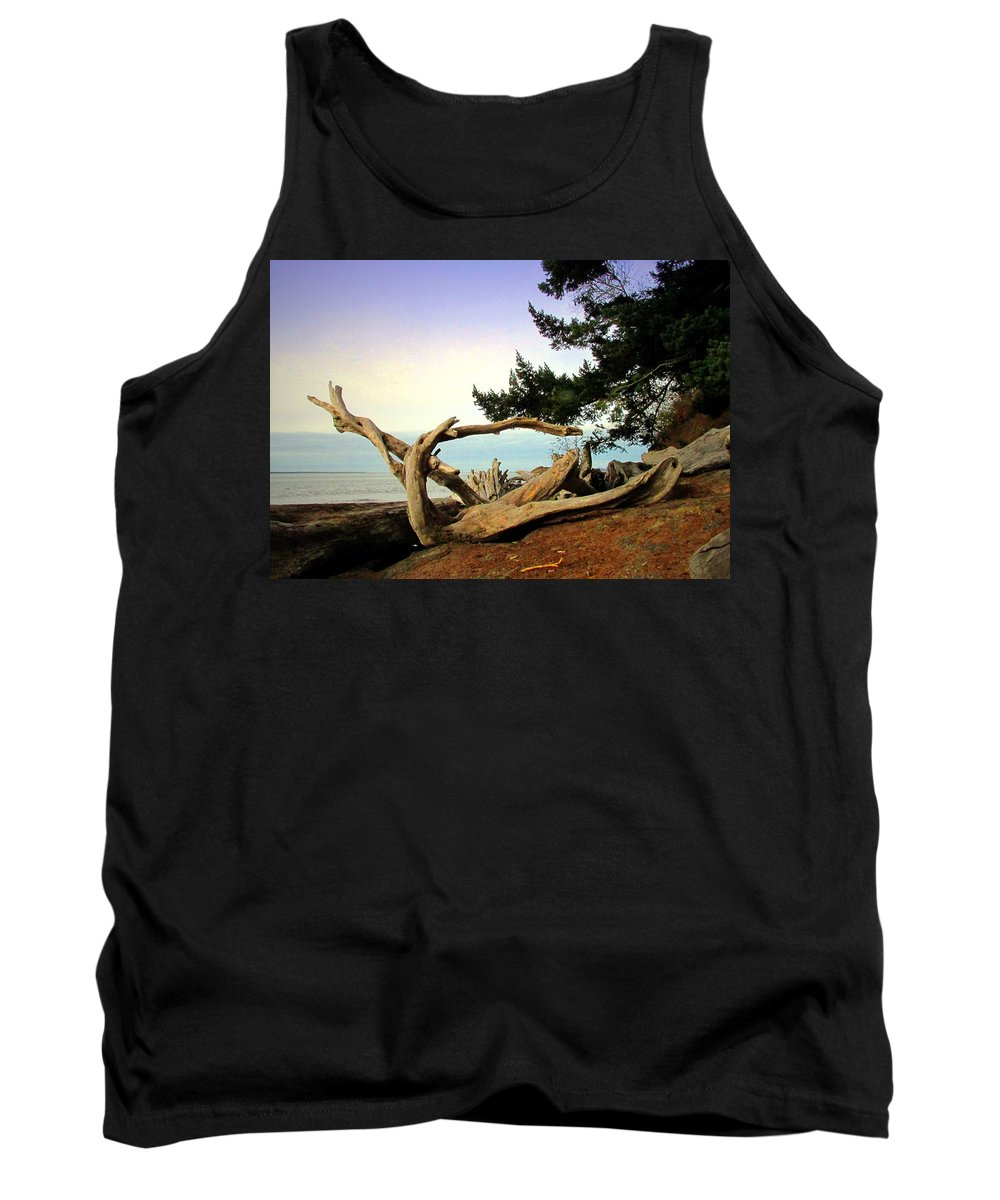 Beach Tank Top featuring the photograph Beauty And The Beach by Joyce Dickens