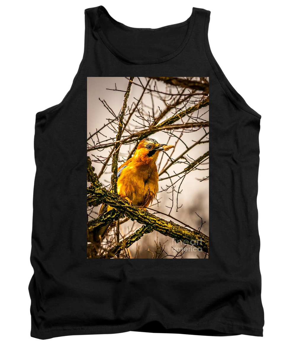 Bird  Tank Top featuring the photograph Bird Holding Food In Mouth by Jetmir Sejdiu