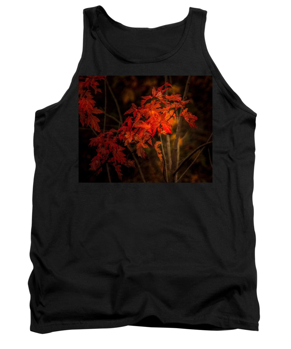 Autumn Tank Top featuring the photograph Blaze Of Leaves by Shari Brase-Smith