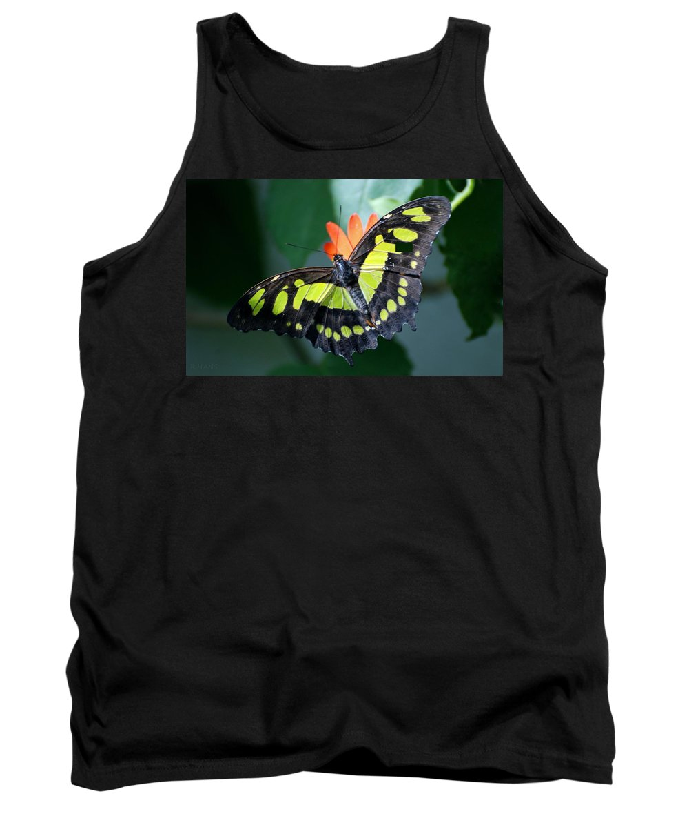 Lepidopterology Tank Top featuring the photograph Blooms And Butterfly5c by Rob Hans