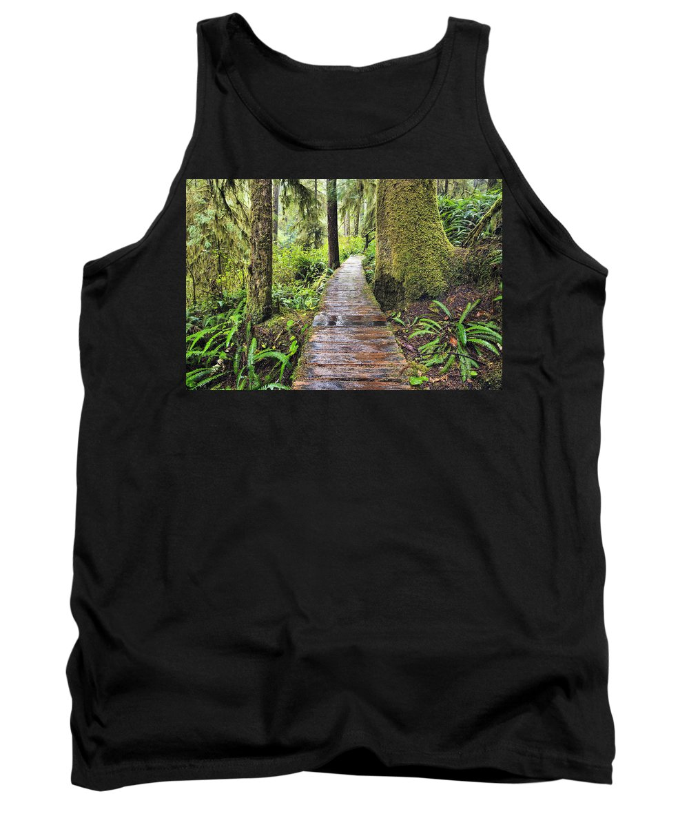 British Columbia Tank Top featuring the photograph Boardwalk On The Rainforest Trail In by Ken Gillespie