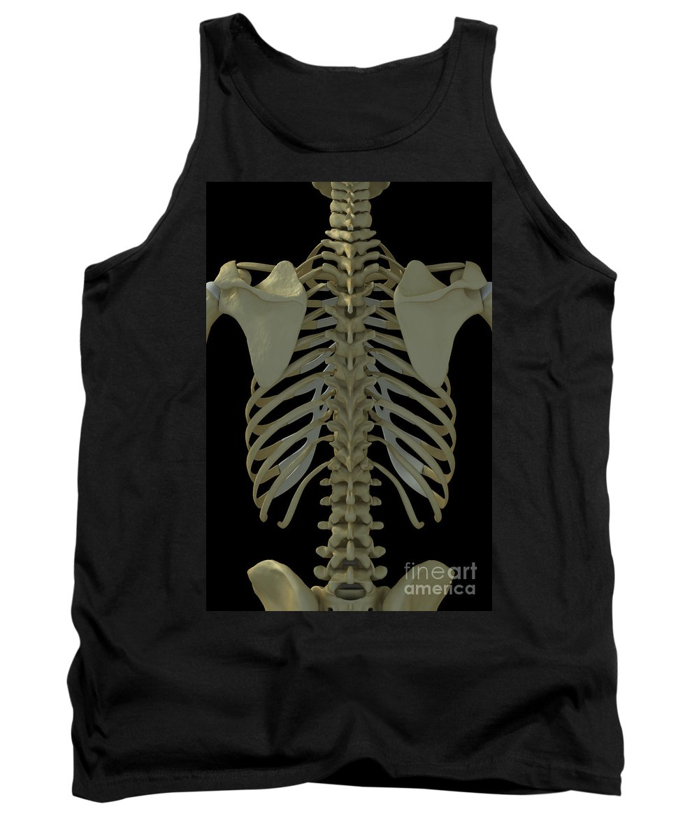 Vertebrae Tank Top featuring the photograph Bones Of The Back by Science Picture Co