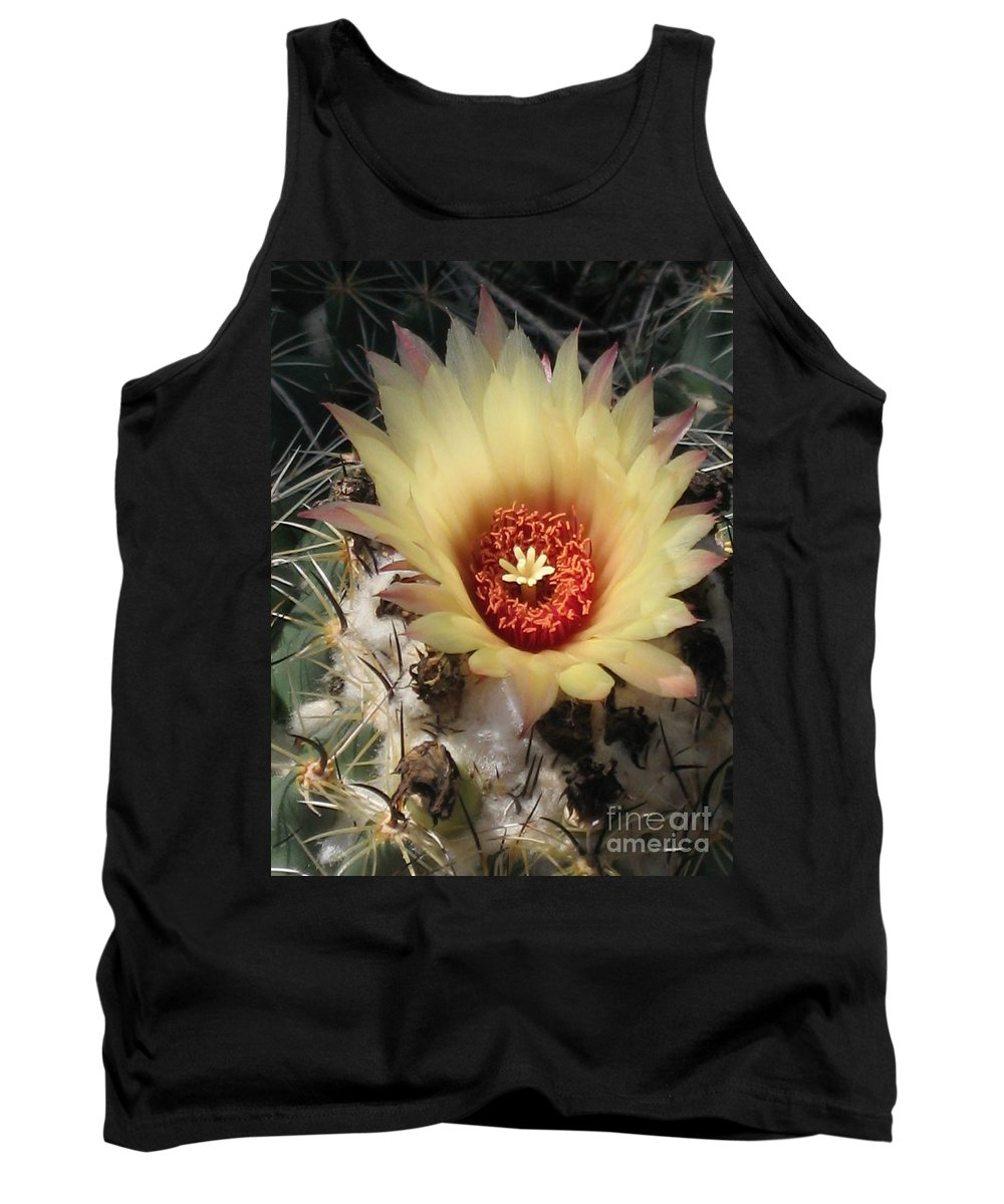 Cactus Tank Top featuring the photograph Bright And Beauty by Christiane Schulze Art And Photography