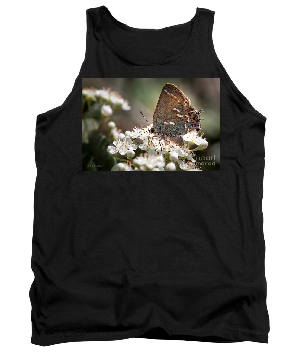 Flowers Tank Top featuring the photograph Butterfly In The Garden by Todd Blanchard
