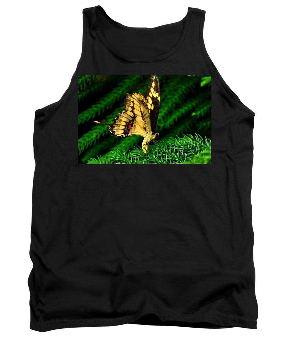 Butterfly Tank Top featuring the photograph Butterfly On Pine by Mark Valentine